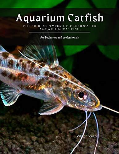 Aquarium Catfish: The 10 Best Types Of Freshwater Aquarium Catfish (English Edition)
