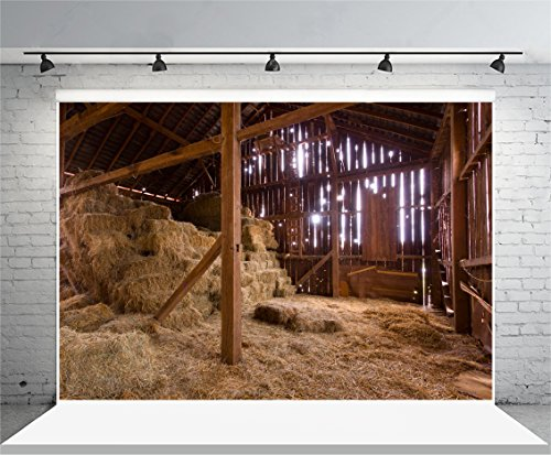 Laeacco 7x5ft Vinyl Photography Background Shabby Old Barn with Sun Streaming from Outside Straw Hay on Floor Hayloft Scene Countryside Adults Art Photos Shooting Video Studio Props 2.2x1.5m