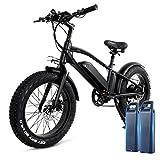 T20 Bicicleta Eléctrica con 2 baterías, 5 velocidades 750W Motor 10Ah Smart BMS Velocidad máxima 45 km/h Pantalla Inteligente Freno de Disco 20 x 4.0 Neumáticos gordos[EU Direct]