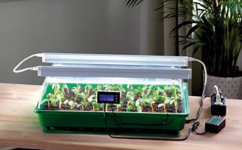 Romberg Serra da Camera con Due lampade, termodog e termostato - Mini Serra Maximus Complete - 57 x 38 x 18 cm