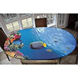 Elastic Polyester Fitted Table Cover,Tropical Emperor Long Living Angelfish in Underwater Exotic Marine Animal Image Decorative Oblong/Oval Elastic Fitted Tablecloth,Fits Tables up to 48' W x 68' L