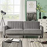 Loveseat Sleeper Sofa Bed, Convertible Folding Sofa Couch, Reclining Sleeper Sofas with Premium Velvet and Wooden Legs for Living Room Furniture, Gray