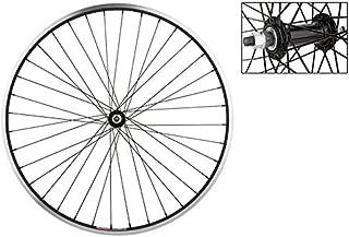WheelMaster Front Bicycle Wheel, 700x35 ALY BK MSW 36 ALY BO 3/8 BK 14gBK