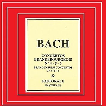 Bach - Concertos Brandebourgeois Nº 4, 5, 6