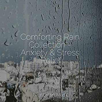 Comforting Rain Collection - Anxiety & Stress Relief