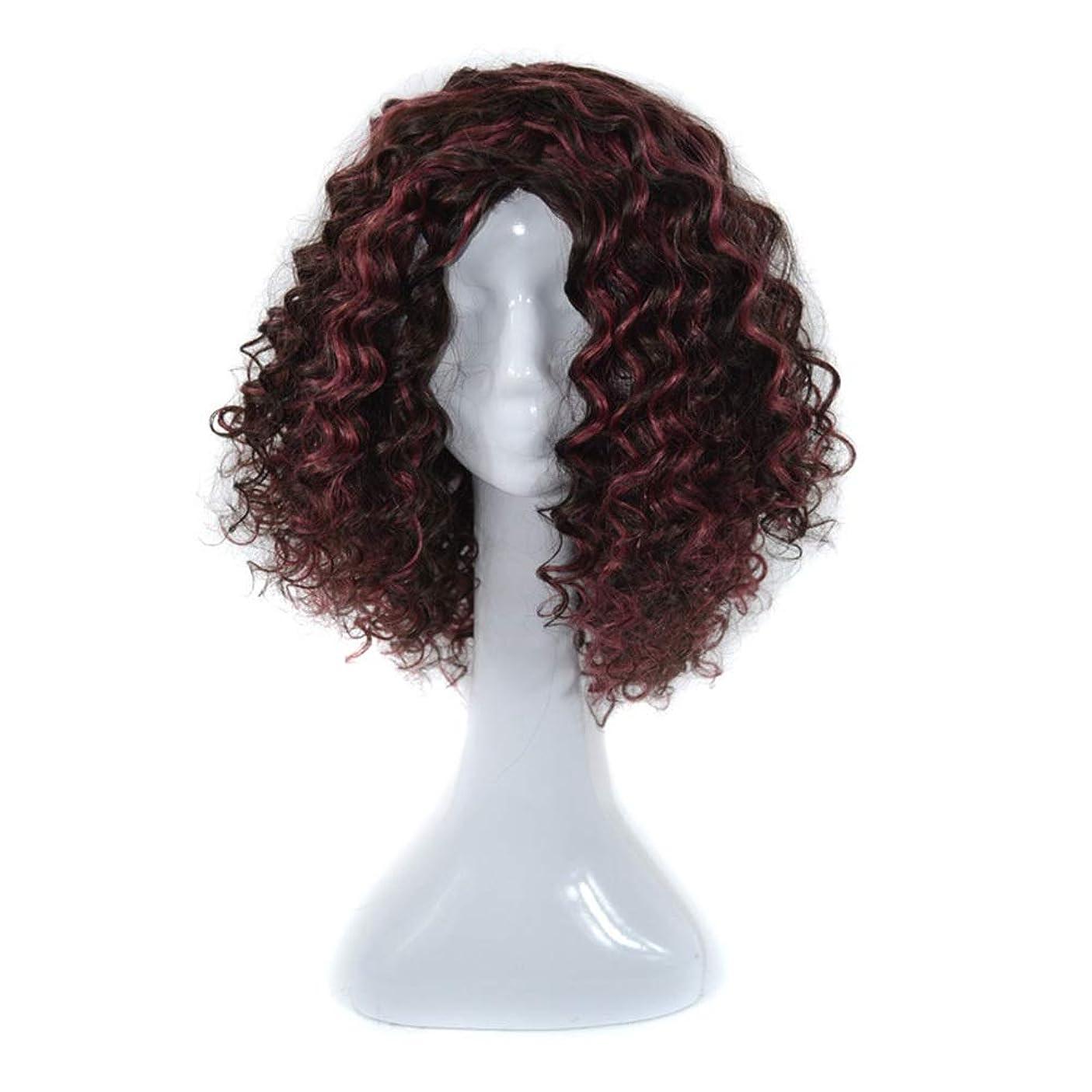 万歳と遊ぶコミットメントYrattary 100%本物の人間の髪の毛の黒ハイライトワインレッドカーリーヘアエクステンション黒人女性用合成髪レースかつらロールプレイングかつらロングとショートの女性自然 (色 : ワインレッド)