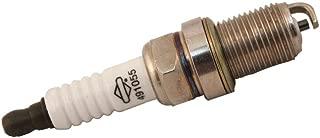 Briggs & Stratton 491055 Spark Plug Genuine Original Equipment Manufacturer (OEM) Part