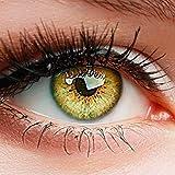 """ELFENWALD farbige Kontaktlinsen ohne Stärke, Produktreihe """"INTENSE"""", ein paar weiche Farblinsen OHNE Aufbewahrunsbehälter, natürlicher Look BERNSTEIN -"""