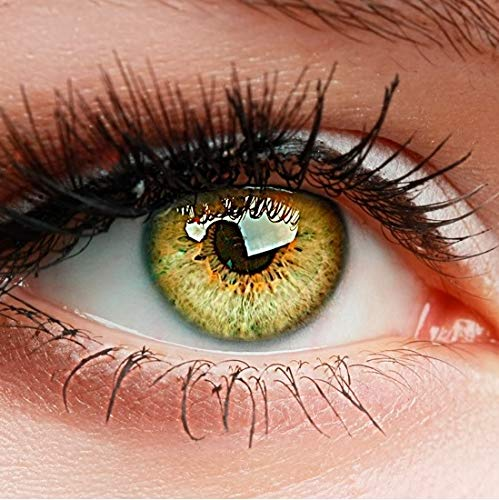ELFENWALD farbige Kontaktlinsen, 3 - Monatslinsen, INTENSE BERNSTEIN, stark deckend, natürlicher Look, maximaler Tragekomfort, ohne Stärke, 1 Paar weiche Farblinsen, inkl. Behälter und Anleitung