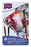 Derwent Academy Watercolour Colouring Pencils, Set of 12, High Quality, 2301941 - Multicolour