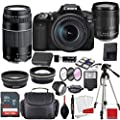 Canon EOS 90D DSLR Camera with EF-S 18-135mm f/3.5-5.6 is USM & 75-300mm III Lens Bundle + Sandisk 64GB Memory + Professional Accessory Bundle from Canon Intl.