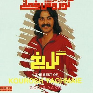 Gole Yakh - Persian Music