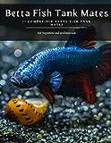 Betta Fish Tank Mates: 11 Compatible Betta Fish Tank Mates