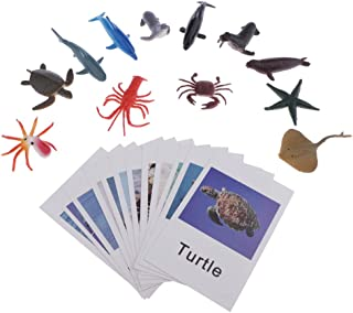Montessori Ocean Animal Match - Learning Toy Figurines and Cards for Kids Boys and Girls 3 Year Old and Up