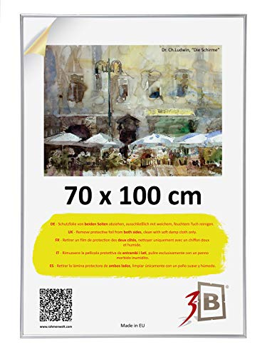3B Poster - 70x100 cm (B1) (ca. 27,5x39,5') – Silver - Plastic Poster Frame with styrene Glass