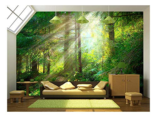 wall26 - Beautiful Forest Wallpaper- Canvas Art Wall Mural Decor - 100'x144'