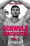 Schwule Geschichten: Vol. 1