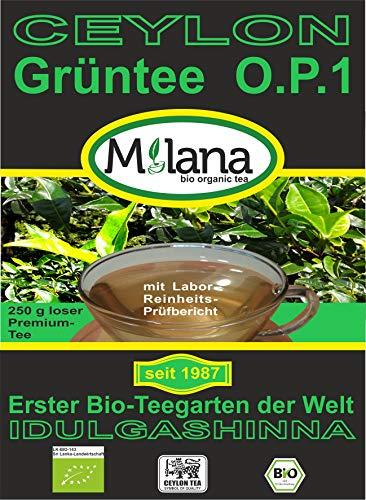 250 g Milana CEYLON Premium BIO-GRÜNTEE OP1 - lose Blätter, grüner Tee Orange Pekoe-1, 55 Prozent des Verkaufspreises ist SOZIALE HILFSLEISTUNG - Der Tee, ...der nach Liebe schmeckt...