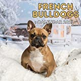 French Bulldogs Calendar 2021: Cute Gift Idea For Bulldog Lovers Or Owners Men And Women