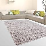 CC Teppiche Shaggy Hochflor Weicher Flokati Wohnzimmer Günstig Angebote Grau, Größe in cm:120 x 170 cm