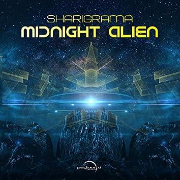Midnight Alien