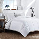 HOMBYS Lightweight Cooling Bamboo Comforter Queen Size Quilted Down Alternative Comforter Duvet Insert,100% Bamboo Cover with 8 Corner Tabs,Summer Comforter, for Night Sweats,for Hot Sleepers