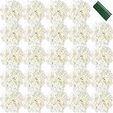 FagusHome 18cm Teste Fiore di Ortensia Artificiale 25 Pz Fiori Artificiali con Steli Fiori di ortensie fintiper la Decorazione (Bianco)