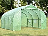 NSdirect Green House(12'x10'x7'),Heavy Duty Walk in Outdoor Plant Gardening Greenhouse Portable Plant Hot House with Double Zipper, (Green)