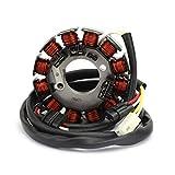 Areyourshop Generador de estator para Yamaha WR450F 2003-2006 5TJ-81410-30-00 5TJ-81410-31-00
