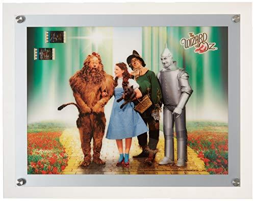 Wizard of Oz Acrylic LightCell