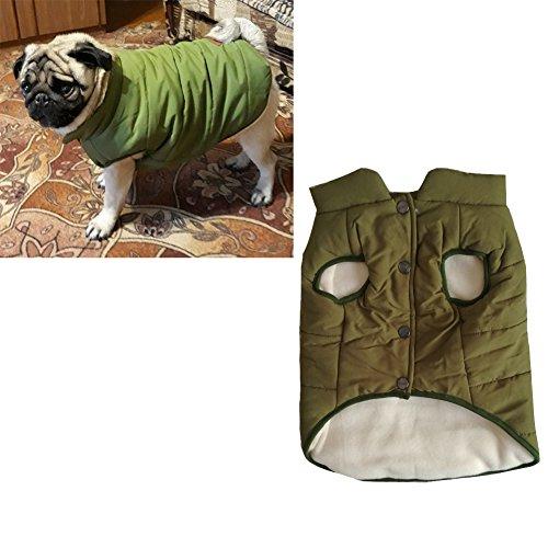 Tineer mit Kapuze Haustier Kleidung Cute Pet Kleidung Warm mit Kapuze französische Bulldogge warme Weste Anzug (M, Grün)