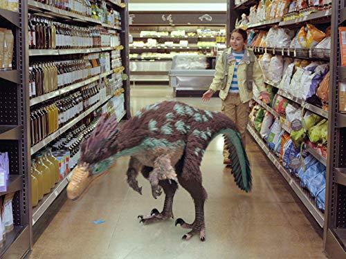 Dino-Einkauf / Dino-Ärger