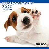 2020年 THEDOGカレンダー ジャックラッセルテリア