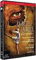 La Bete Et La Belle [DVD]