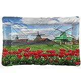 VINISATH Manta para Perros,Molinos de viento holandeses tradicionales con tulipanes rojos Campo escénico de Ámsterdam Río Decorativo,Gruesas para Mascotas Mantas Cálidas para Gatos y Perros para Camas