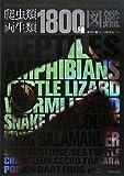 【図鑑】爬虫類飼育者にオススメの図鑑一覧 - 【図鑑】爬虫類飼育者にオススメの図鑑一覧