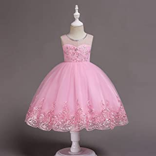 Girl Dresses Tulle Party Gown Children's Short Embroidered Princess Dress (Color : Pink, Size : 150cm)