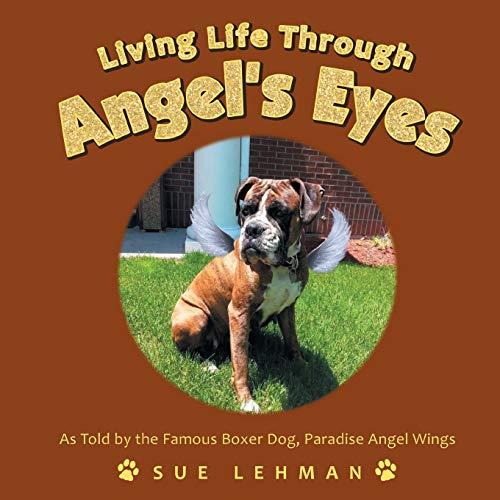 Living Life Through Angel's Eyes