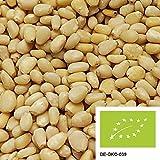 1kg de pignons de cèdres sibériens biologiques provenant de la collecte sauvage - NOUVELLE RÉCOLTE - noix biologiques non traitées et sans additifs