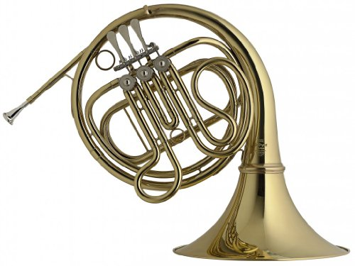 Stagg WS - HR245 F-3 Rot Valve French Horn with Form Case