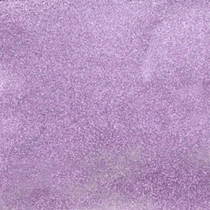 誠意雇う判読できないピカエース ネイル用パウダー シャインパウダー #831 若紫 0.25g
