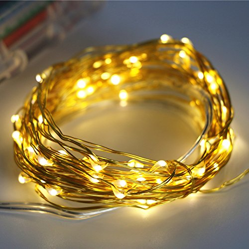 ARDUX 20 feet 60 LEDs Waterproof Golden Wire Fairy String Lights with 8 Modes Remote Control, Warm White Battery Operated Starry String Light for Home Garden Décor