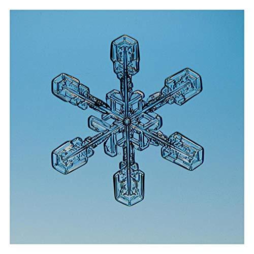 Artworks Italia Schneeflocke durch Mikroskop sichtbar, Papierkunst, 66 x 66 cm