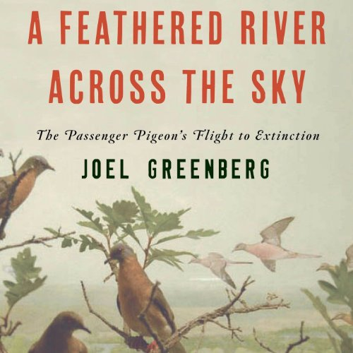 A Feathered River Across the Sky audiobook cover art