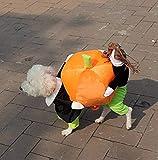 YiZYiF Hund tragen Kürbis Kostüm/Piratenkostüm komische Kleidung Katze Haustier Hundekostüm...