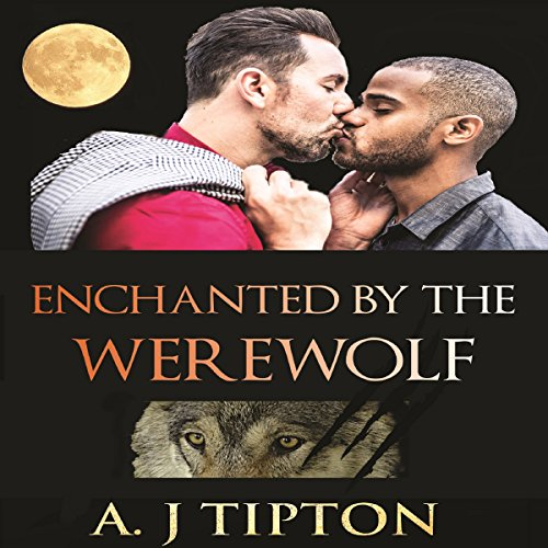 Enchanted by the Werewolf Audiobook By AJ Tipton cover art