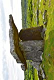 Poulnabrone Dolmen Ancient Burial Chamber Ireland Journal: 150 page lined notebook/diary