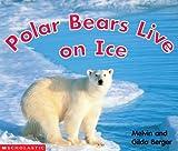 Polar Bears Live on Ice