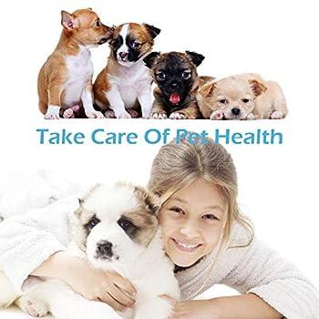 Brosses à dents pour chiens,Soins Dentaires pour Chiens,Dog Toothbrush, Nettoyage Des dDents Jouet à Mâcher Pour Chiens Chiots, Soins Bucco-Dentaires Pour Chiens