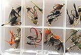 BestCity Fliegenfischen, Nymphe, Perlenkopf-Auswahl, 32 Fliegen zum Forellenangeln, inklusive Clip-Verschluss-Fliegenbox #341